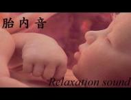 【びっくり】赤ちゃんが泣き止む音楽 第4弾「胎内音」