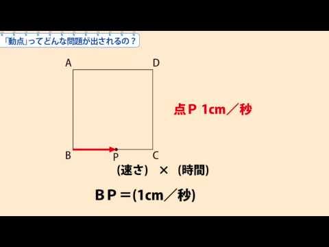 中1数学 「動点」ってどんな問題が出されるの?