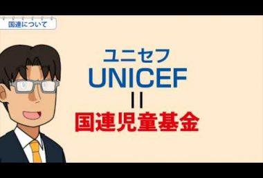 小6社会 国連について