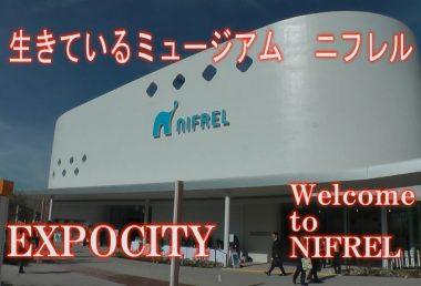 NIFREL ニフレル 感性にふれる EXPOCITY エキスポシティー 海遊館